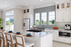Plan 3 & 3X: Kitchen/Living